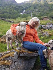 Evi Schafe